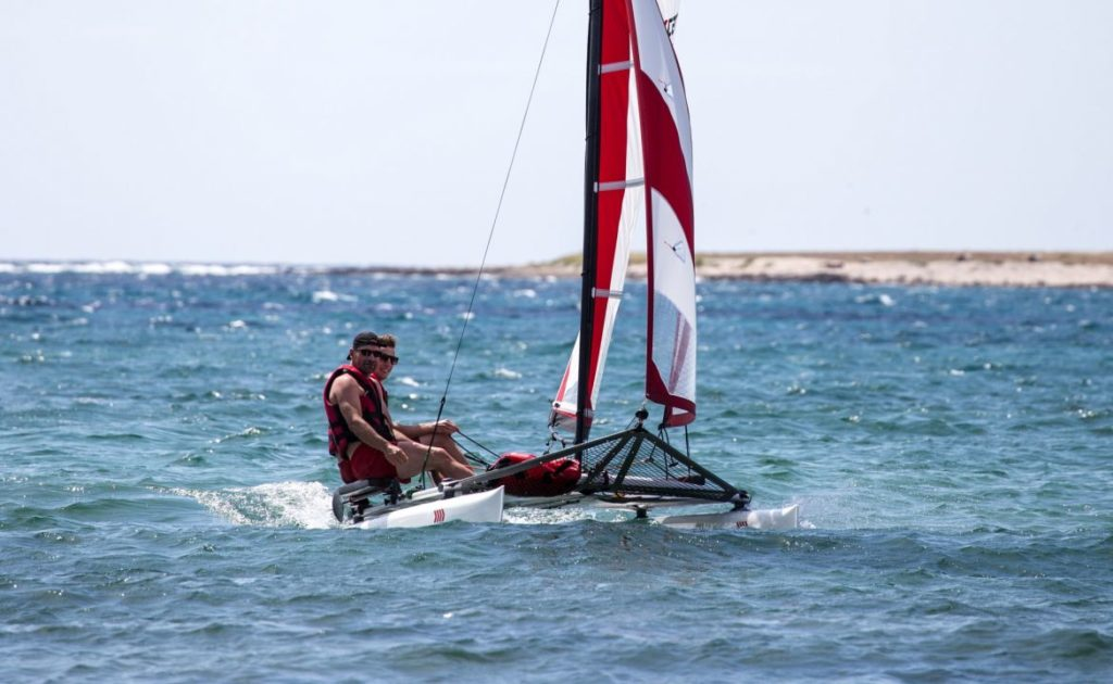 sailboat-catamaran-portable-car-roof-toppable_4